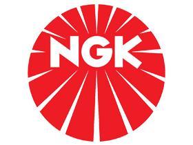 Catálogo Ngk